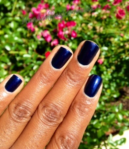 OPI Russian Navy
