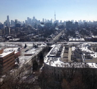 Skyline view from The Towers, the top of the Casa Loma.
